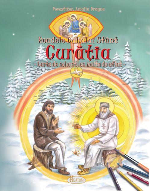 Roadele Duhului Sfânt - vol. 1. CURĂȚIA.