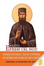 Sfântul Efrem Cel Nou – Tămăduitorul Celor Cuprinși De Patima Drogurilor Ori A Beției. Mărturii și Rugăciuni De Folos