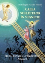 Calea Sufletelor In Vesnicie. Vamile Vazduhului - Vol. I