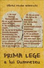 Prima Lege A Lui Dumnezeu