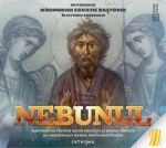 Audiobook    Nebunul