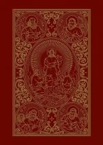 Sfânta şi Dumnezeiasca Evanghelie - Ilustrata Color (mare)