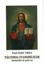 Tâlcuirea Evangheliilor Duminicilor De Peste An
