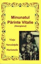 Minunatul Părinte Vitalie (georgianul)- Viața, Nevoințele, Harismele