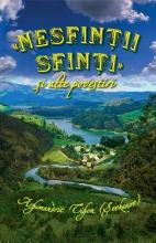 Nesfinții Sfinți și Alte Povestiri Editie Color Cartonata